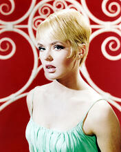 This is an image of Photograph & Poster of Joey Heatherton 292443