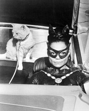 This is an image of Photograph & Poster of Eartha Kitt 199981