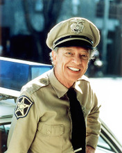 This is an image of Photograph & Poster of Don Knotts 292611