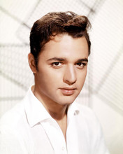 This is an image of Photograph & Poster of Sal Mineo 292644