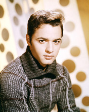This is an image of Photograph & Poster of Sal Mineo 292647