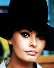 This is an image of Photograph & Poster of Sophia Loren 292707