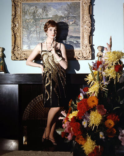 This is an image of Photograph & Poster of Julie Andrews 292922