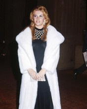 This is an image of Photograph & Poster of Ann-Margret 292931