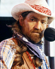 This is an image of Photograph & Poster of Willie Nelson 292813