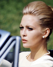 This is an image of Photograph & Poster of Faye Dunaway 293187