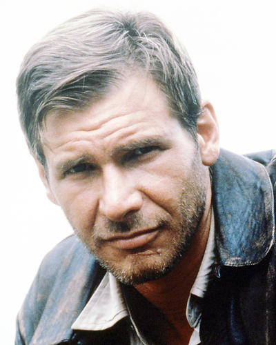 This is an image of Photograph & Poster of Harrison Ford 293342