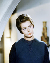 This is an image of Photograph & Poster of Sophia Loren 293357