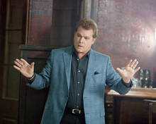 This is an image of Photograph & Poster of Ray Liotta 293042