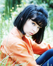 This is an image of Photograph & Poster of Yvonne Craig 293382