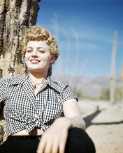 This is an image of Photograph & Poster of Shelley Winters 293497