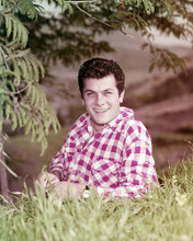 This is an image of Photograph & Poster of Tony Curtis 293544