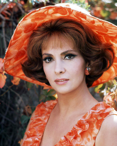 This is an image of Photograph & Poster of Gina Lollobrigida 293899