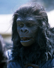 This is an image of Photograph & Poster of Planet of the Apes 293819
