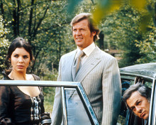 This is an image of Photograph & Poster of The Persuaders 280553