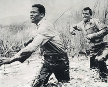 This is an image of Photograph & Poster of The Defiant Ones 190113