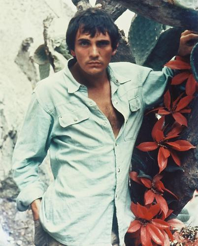 This is an image of Photograph & Poster of Terence Stamp 231160