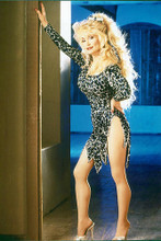 This is an image of Photograph & Poster of Dolly Parton 280245