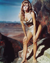 This is an image of Photograph & Poster of Raquel Welch 231612