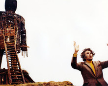 This is an image of Photograph & Poster of The Wicker Man 294758