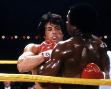 This is an image of Photograph & Poster of Sylvester Stallone 296654