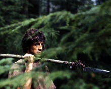 This is an image of Photograph & Poster of Sylvester Stallone 296660