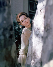 This is an image of Photograph & Poster of Leslie Caron 296701