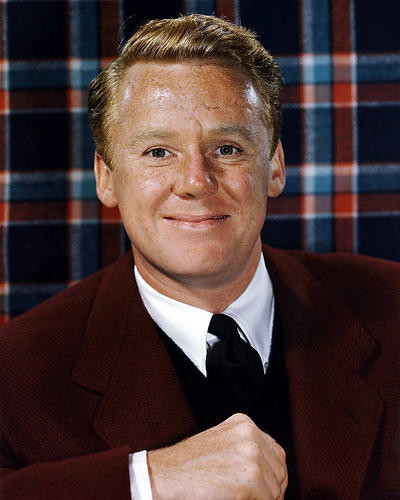This is an image of Premium Photograph & Poster of Van Johnson 294891