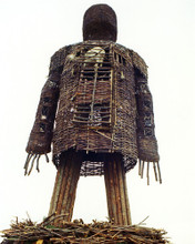 This is an image of Photograph & Poster of The Wicker Man 295439