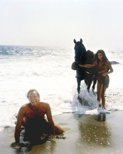 This is an image of Photograph & Poster of Planet of the Apes 295705