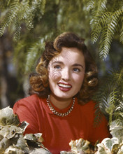 This is an image of Premium Photograph & Poster of Donna Reed 297266