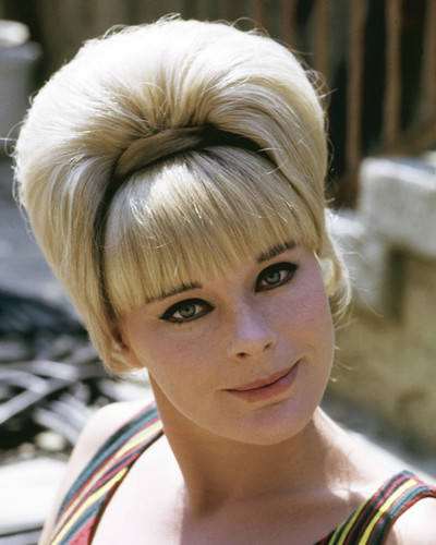 This is an image of Photograph & Poster of Elke Sommer 296772