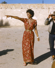 This is an image of Photograph & Poster of Sophia Loren 296776