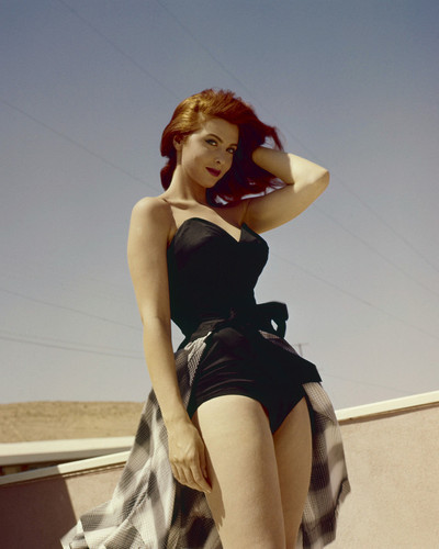 This is an image of Photograph & Poster of Tina Louise 296781