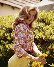 This is an image of Photograph & Poster of Jane Fonda 296785