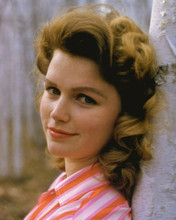 This is an image of Photograph & Poster of Lee Remick 296064