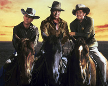 This is an image of Photograph & Poster of Rio Bravo 296056
