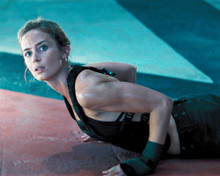 This is an image of Photograph & Poster of Emily Blunt 296157