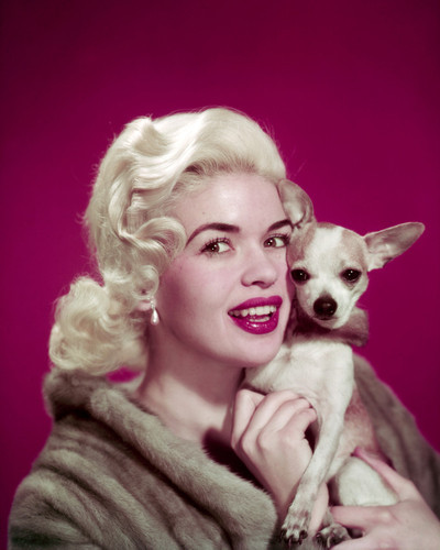 This is an image of Photograph & Poster of Jayne Mansfield 297754