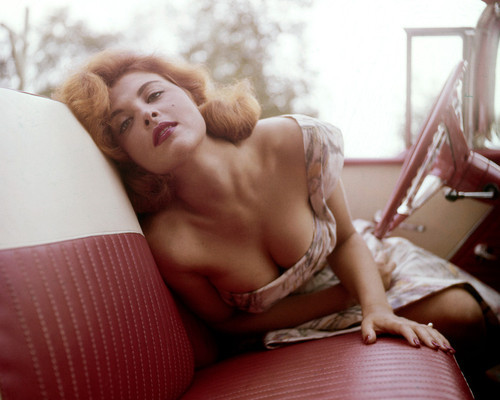 This is an image of Premium Photograph & Poster of Tina Louise 297819