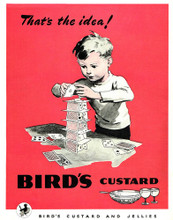 This is an image of Vintage Reproduction of Birds Custard 297329