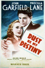 This is an image of Vintage Reproduction of Dust Be My Destinty 297075