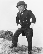 This is an image of Photograph & Poster of Herve Villechaize 171610