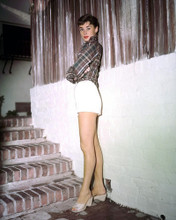 This is an image of Photograph & Poster of Audrey Hepburn 298123