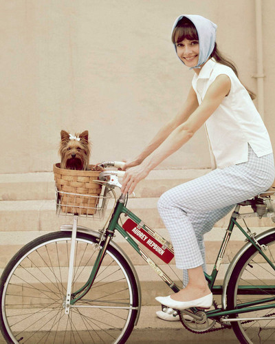 This is an image of Photograph & Poster of Audrey Hepburn 298126