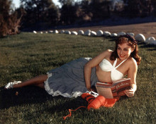 This is an image of Photograph & Poster of Paulette Goddard 298179