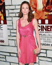 This is an image of Photograph & Poster of Diane Lane 286001