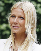 This is an image of Photograph & Poster of Gwyneth Paltrow 286021