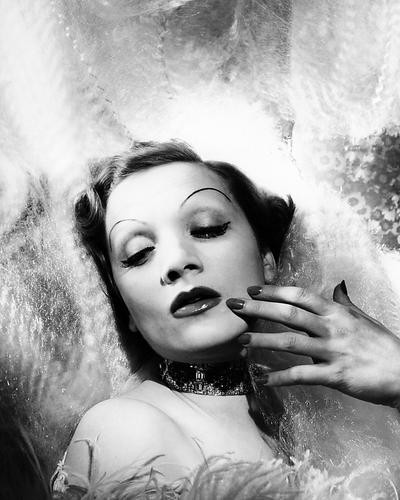 This is an image of Photograph & Poster of Marlene Dietrich 196466