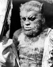 This is an image of Photograph & Poster of Curse of the Werewolf 196477